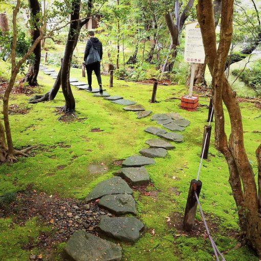 Kuvassa puutarha, missä kävelee mies